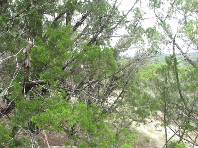 7204 Deepwood Dr, Lago Vista, TX 78645 (#5028748) :: Forte Properties