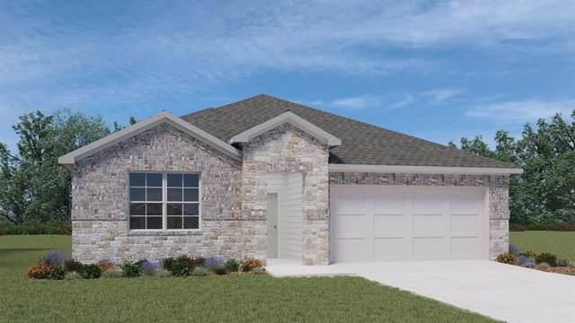 117 Cherry Laurel Ln, Kyle, TX 78640 (MLS #5065012) :: Brautigan Realty