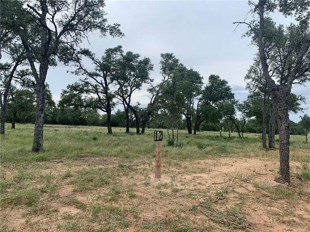 12 Mr. Charlie Ln, Round Mountain, TX 78663 (#5087583) :: The Perry Henderson Group at Berkshire Hathaway Texas Realty