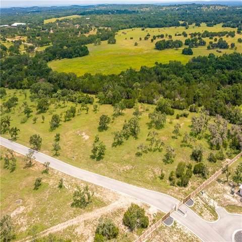 10 Morning Dew Dr, Round Mountain, TX 78663 (#5138997) :: Papasan Real Estate Team @ Keller Williams Realty