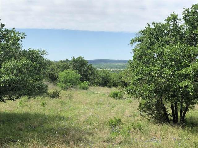 733 Lookout Mountain, Kingsland, TX 78639 (#5163356) :: First Texas Brokerage Company