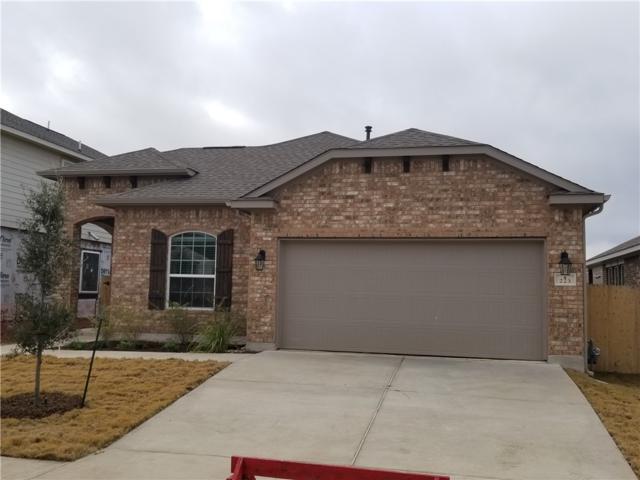 223 Alford St, San Marcos, TX 78666 (#5222641) :: Zina & Co. Real Estate