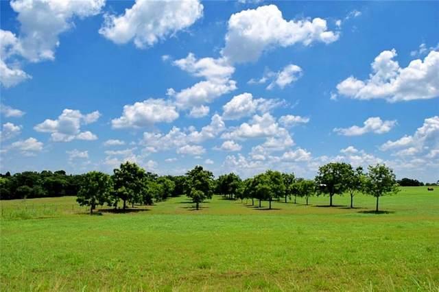 001 Hranicky Rd, Schulenburg, TX 78956 (#5333061) :: First Texas Brokerage Company