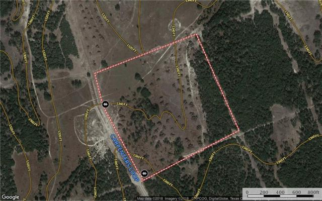 Tract 25 Carpenters Loop, Burnet, TX 78611 (#5466909) :: 3 Creeks Real Estate