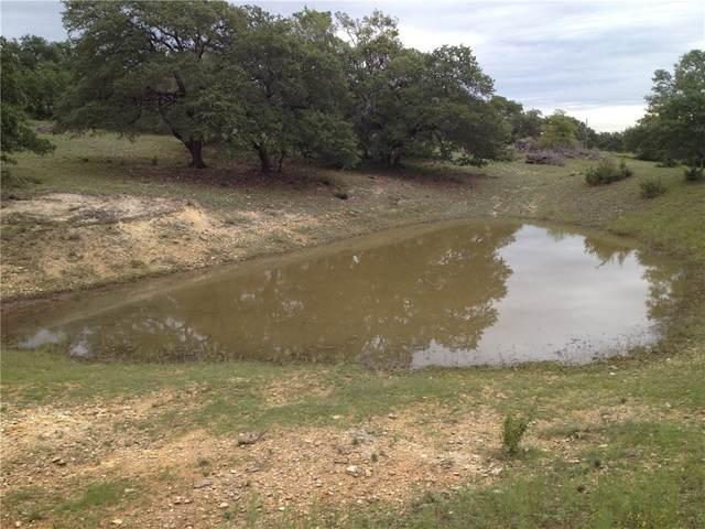 16602 Hamilton  Pool Rd, Austin, TX 78738 (MLS #5481385) :: Vista Real Estate