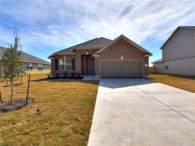 197 Evening Dusk Dr, Kyle, TX 78640 (#5598520) :: Watters International