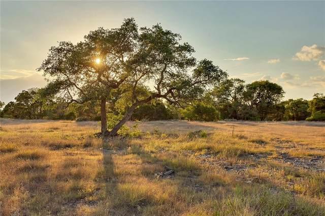 Ranch #3 Liberty Ranch Rd, Austin, TX 78610 (MLS #5650007) :: Green Residential
