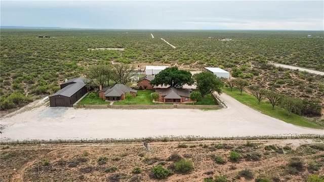 4696 J Bar Ranch Rd, Crane, TX 79731 (#5687991) :: Papasan Real Estate Team @ Keller Williams Realty