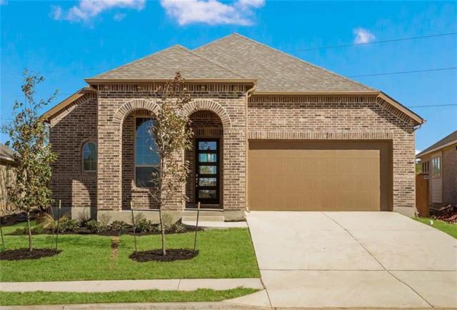 113 Tulip Garden Trl, San Marcos, TX 78666 (#5693142) :: Ben Kinney Real Estate Team