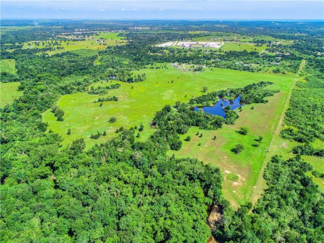 233 E Mcdonald Ln, Cedar Creek, TX 78612 (#5854701) :: The Heyl Group at Keller Williams