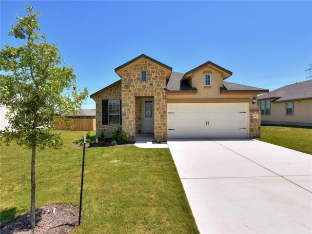 19213 Quebrada Dr, Pflugerville, TX 78660 (#5922012) :: The Gregory Group