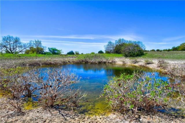 TBD County Road 225, Briggs, TX 78608 (#5932298) :: The Perry Henderson Group at Berkshire Hathaway Texas Realty