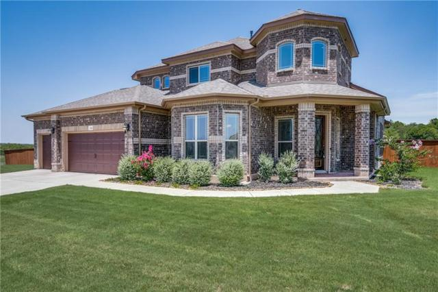 3001 Brand Iron Dr, San Marcos, TX 78666 (#6072992) :: The Gregory Group