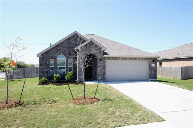 101 Plantain Dr, Hutto, TX 78634 (#6197241) :: The Heyl Group at Keller Williams