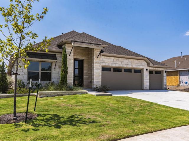 14120 Arbor Hill Cv, Manor, TX 78653 (#6245670) :: Watters International