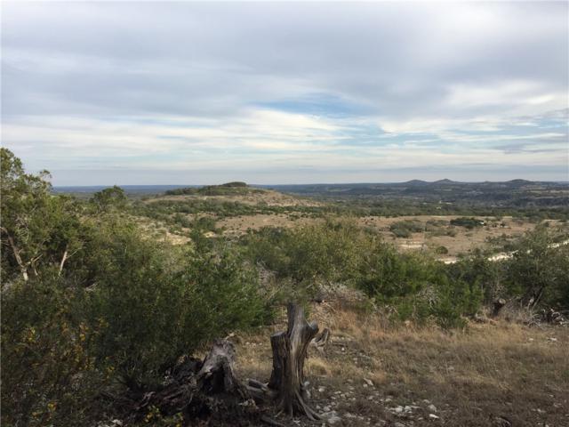 717 Kendalia Ranch Rd, Blanco, TX 78606 (#6255097) :: Papasan Real Estate Team @ Keller Williams Realty