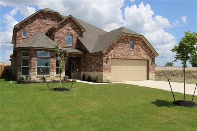 20401 Whimbrel Ct, Pflugerville, TX 78660 (#6387287) :: Watters International