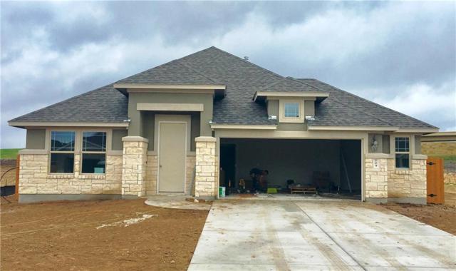 704 Hereford Loop, Hutto, TX 78634 (#6390935) :: Zina & Co. Real Estate