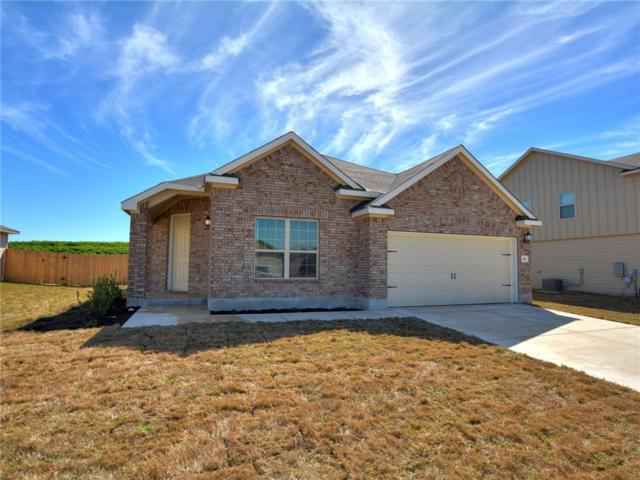 161 Evening Dusk Dr, Kyle, TX 78640 (#6397476) :: Watters International