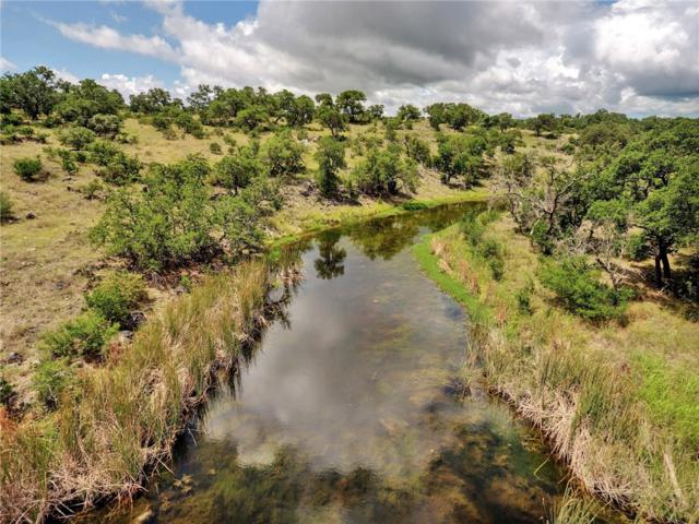 1843 Althaus Ranch Rd, Johnson City, TX 78636 (MLS #6401520) :: Bray Real Estate Group