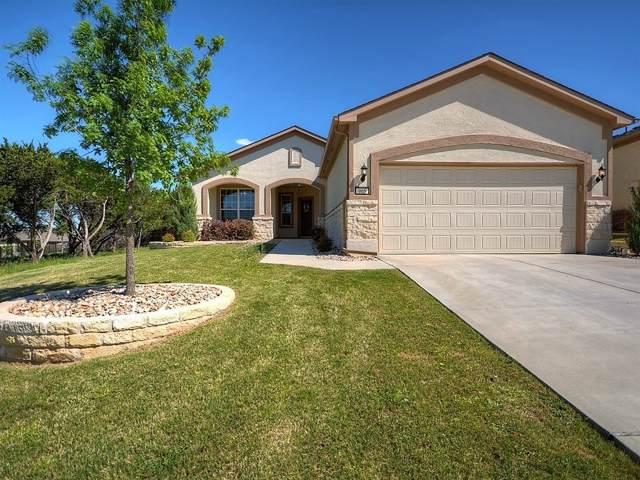905 Dome Peak Ln, Georgetown, TX 78633 (#6465120) :: Zina & Co. Real Estate