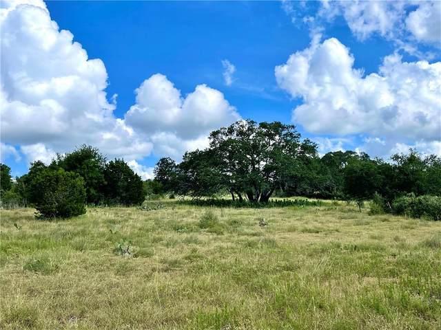 3035 Bridlewood Ranches Dr, San Marcos, TX 78666 (MLS #6471352) :: Vista Real Estate