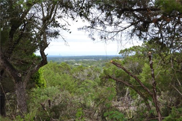 13229 Madrone Mtn Way, Dripping Springs, TX 78620 (#6473044) :: The Heyl Group at Keller Williams