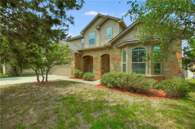 17803 Linkhill Dr, Dripping Springs, TX 78620 (#6476391) :: RE/MAX Capital City