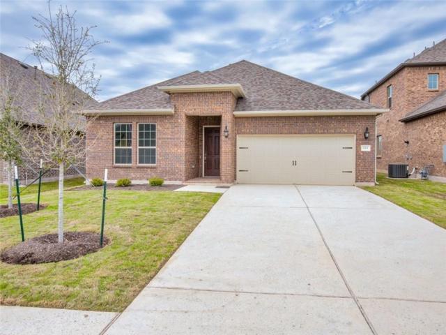 1313 Mustang Brook Ln, Leander, TX 78641 (#6513322) :: Papasan Real Estate Team @ Keller Williams Realty
