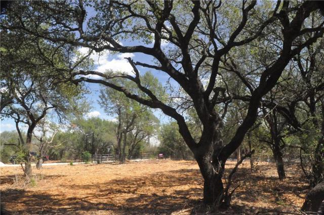 300 Cr 220, Florence, TX 76527 (#6589211) :: The ZinaSells Group