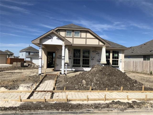425 Canadian Springs Dr, Leander, TX 78641 (#6738614) :: Papasan Real Estate Team @ Keller Williams Realty