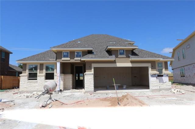 2957 Diego Dr, Round Rock, TX 78665 (#6858411) :: Douglas Residential