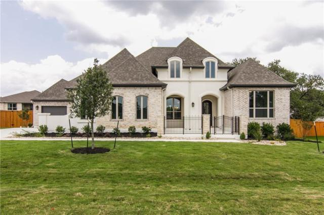 420 Premier Park Loop, Dripping Springs, TX 78620 (#6954819) :: The Perry Henderson Group at Berkshire Hathaway Texas Realty