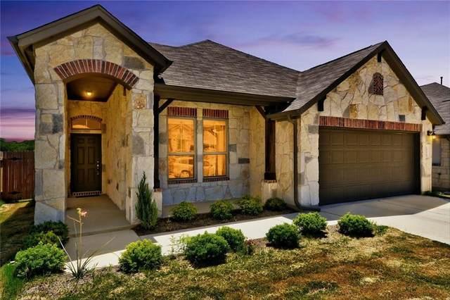 1008 Goldilocks Ln, Manchaca, TX 78652 (MLS #7007172) :: Brautigan Realty