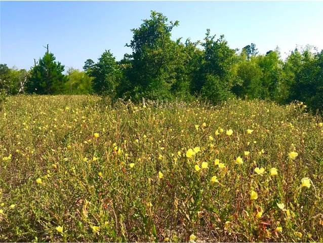 Lot 50 Martin Lane, Paige, TX 78659 (#7012575) :: The Perry Henderson Group at Berkshire Hathaway Texas Realty