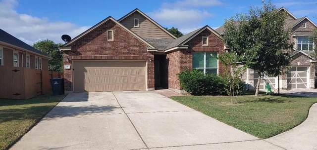 217 Sheepshank Dr, Georgetown, TX 78633 (#7047379) :: Papasan Real Estate Team @ Keller Williams Realty