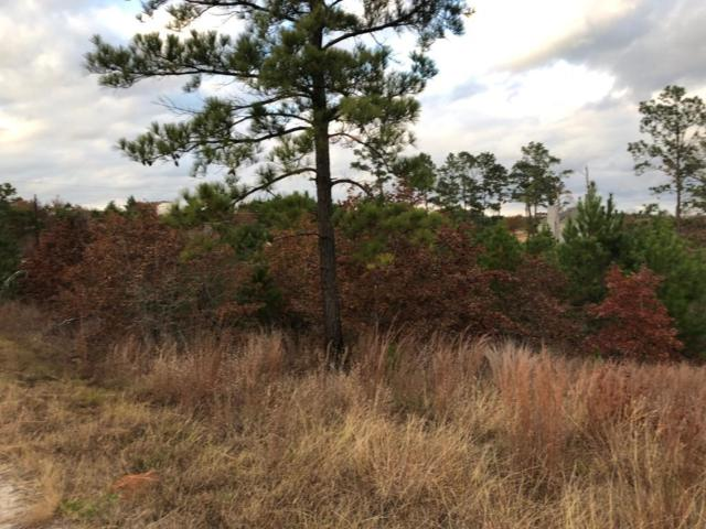 Lot 71 Lakeside Dr #1, Bastrop, TX 78602 (#7059020) :: The Perry Henderson Group at Berkshire Hathaway Texas Realty