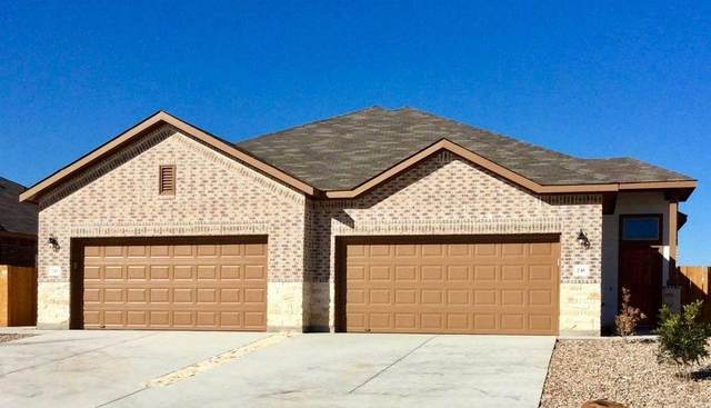 241 and 243 Hidden Springs Dr, Bastrop, TX 78602 (#7062569) :: Green City Realty