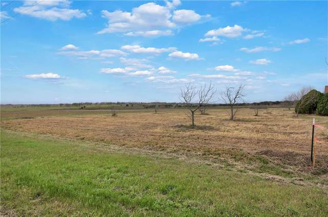 250 County Road 427, Thrall, TX 76578 (#7292573) :: First Texas Brokerage Company