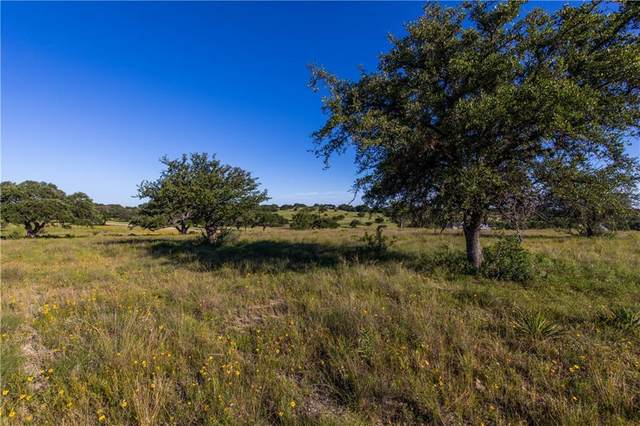 Lot 19 Stanton Ranch Rd, Johnson City, TX 78636 (#7335323) :: The Heyl Group at Keller Williams