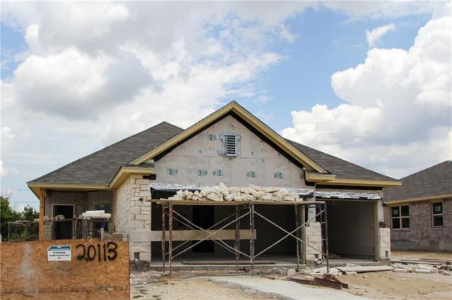 20113 Navarre Ter, Pflugerville, TX 78660 (#7431519) :: The ZinaSells Group