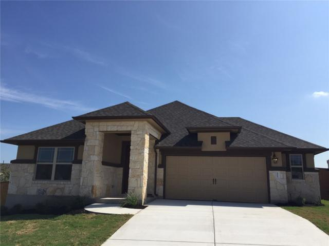 2965 Consuelo Way, Round Rock, TX 78665 (#7466425) :: Forte Properties