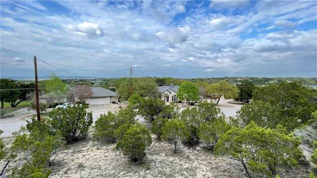 20801 Leaning Oak Dr, Lago Vista, TX 78645 (#7489006) :: Zina & Co. Real Estate