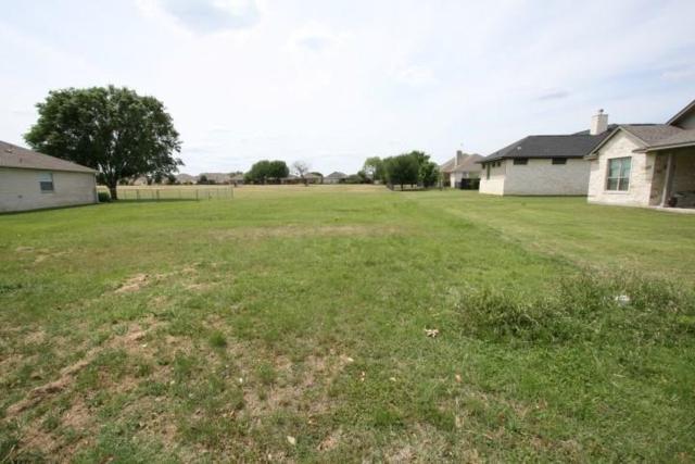 Lot 519 Firestone Pl, Meadowlakes, TX 78654 (#7502175) :: Ana Luxury Homes