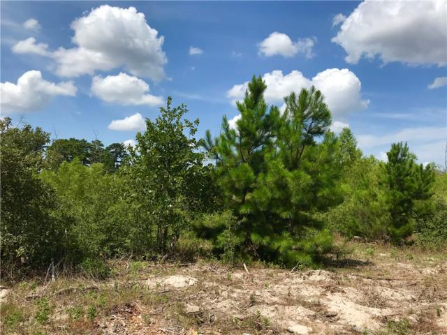 Lot 50 Martin Lane, Paige, TX 78659 (#7517999) :: Zina & Co. Real Estate