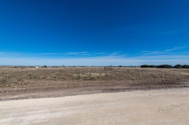 Lot 42 Lila Ln, Bertram, TX 78605 (#7657867) :: The Perry Henderson Group at Berkshire Hathaway Texas Realty