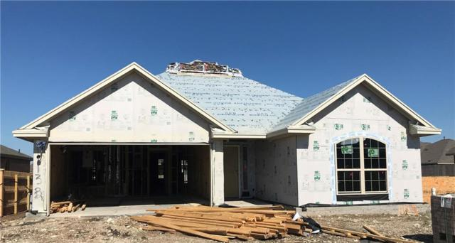1113 Chad Dr, Round Rock, TX 78665 (#7704371) :: Ana Luxury Homes