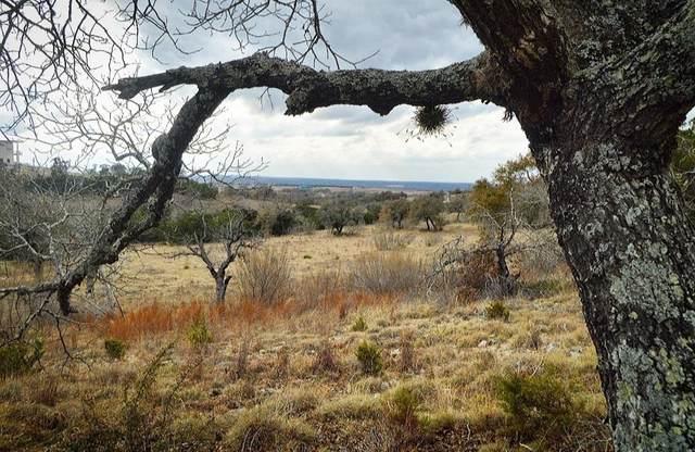 468 Cedar Mountain Dr, Spicewood, TX 78654 (#7889611) :: Zina & Co. Real Estate