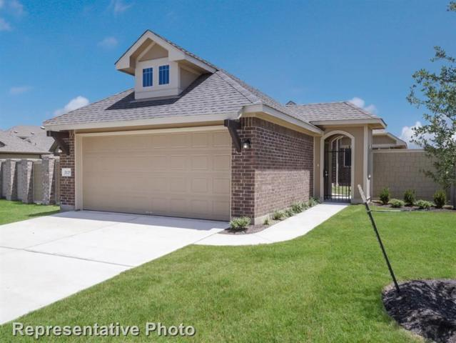 2125 Pindos Pony Way, Georgetown, TX 78626 (#7894874) :: The ZinaSells Group