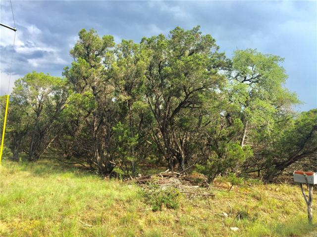 lot 1 Post Oak Rd Lot 1, Wimberley, TX 78676 (#7895730) :: The Heyl Group at Keller Williams